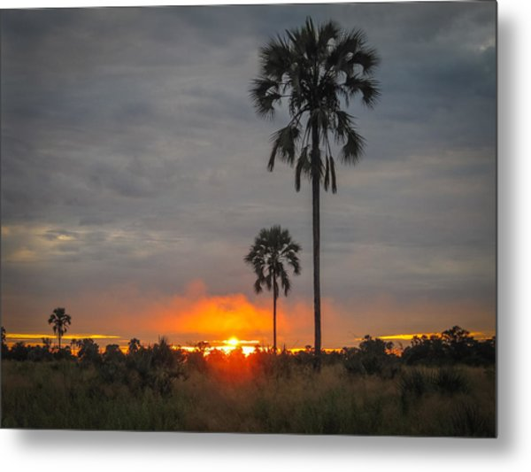 Typical African Sunset Metal Print