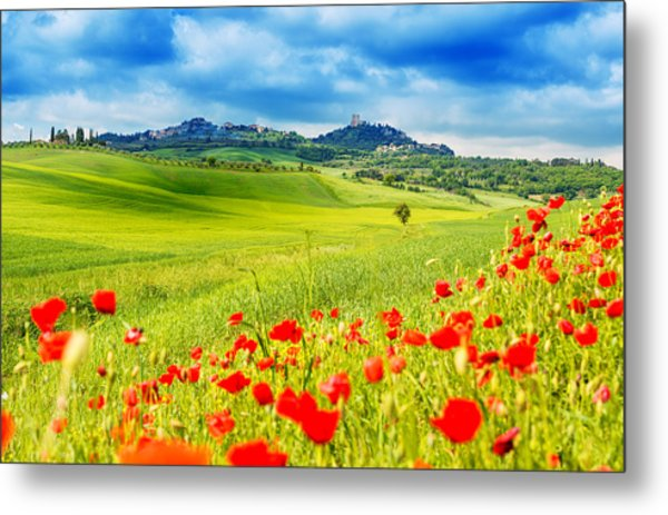 Typical Landscape Of Tuscany Metal Print by Gehringj