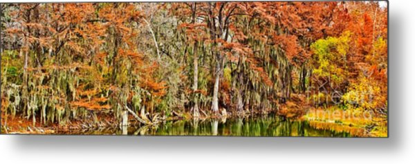 Ultimate Cypress Panoramic Metal Print
