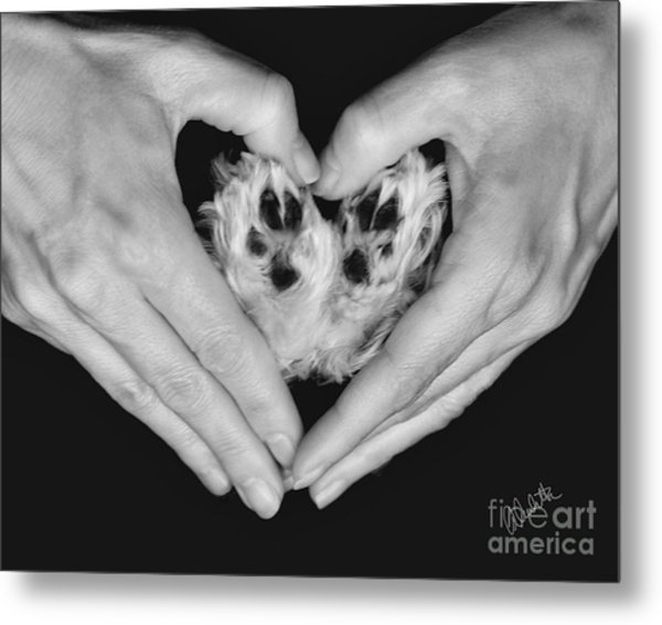 Unconditional Love Metal Print