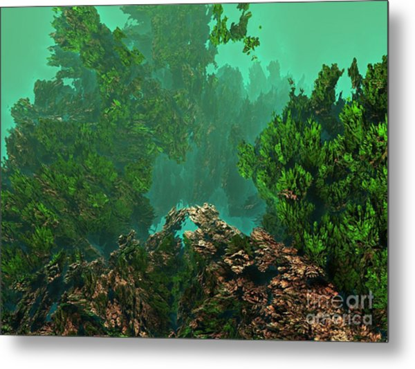 Underwater 8 Metal Print by Bernard MICHEL
