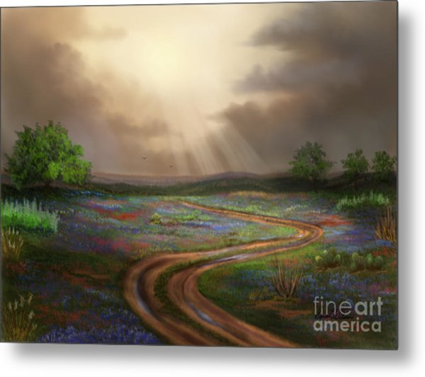 Untamed Country Metal Print