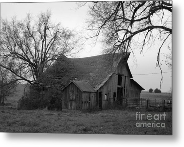 Until The Cows Come Home Metal Print
