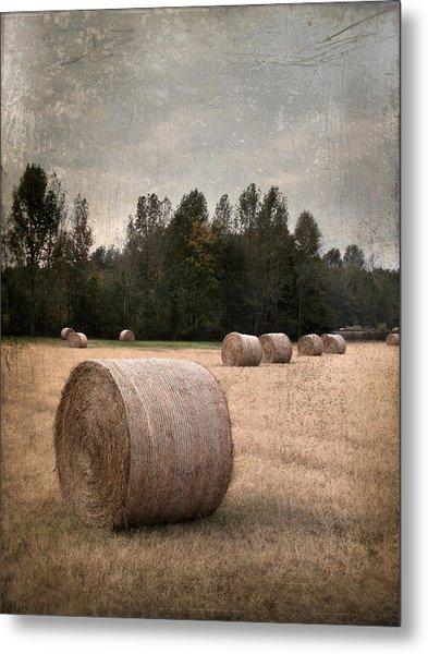Untitled Hay Bale Metal Print by Robert Tolchin