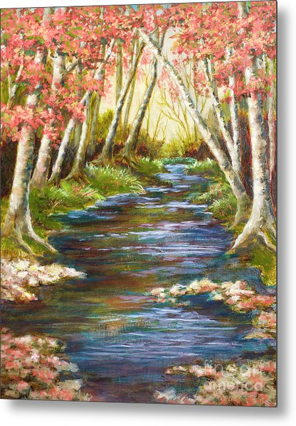 Up A Creek Metal Print