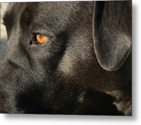 Up Close And Personal Metal Print