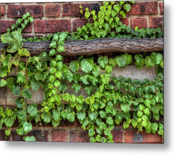 Metal Print featuring the photograph Up Over And Under by Paul Wear