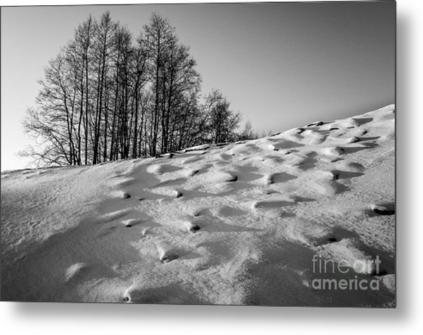 Up To The Hill Bw Metal Print