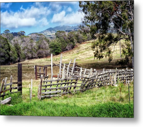 Upcountry 2 Metal Print