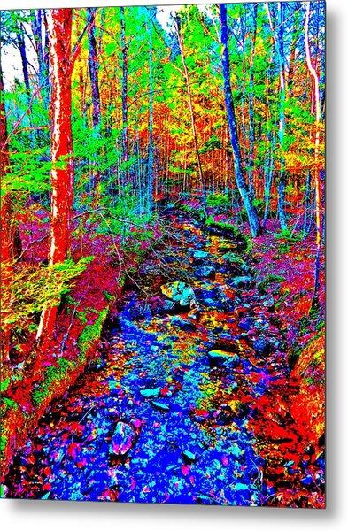 Upland Trail 2014 221 Metal Print