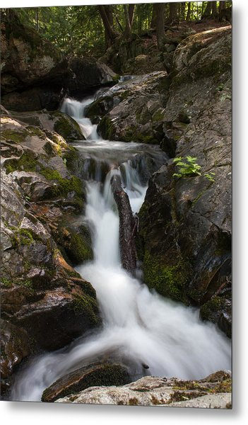 Upper Pup Creek Falls Metal Print