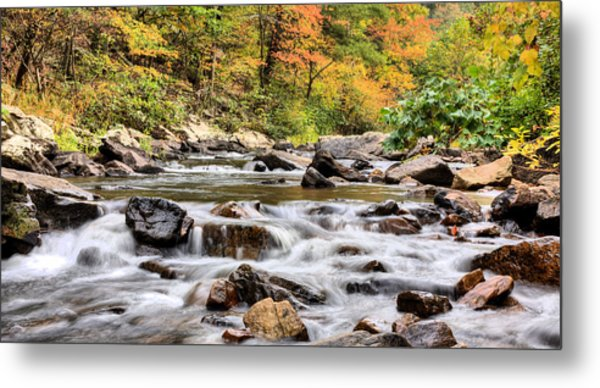 Upstream Metal Print by JC Findley