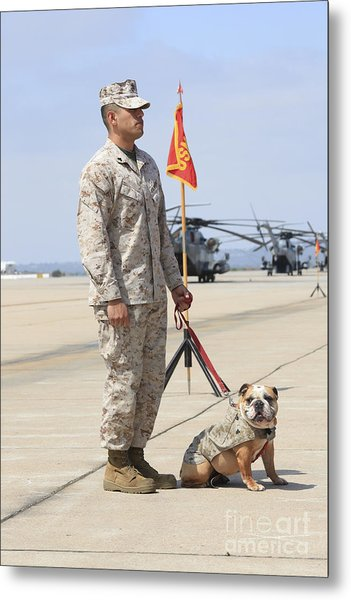 U.s. Marine And The Official Mascot Metal Print