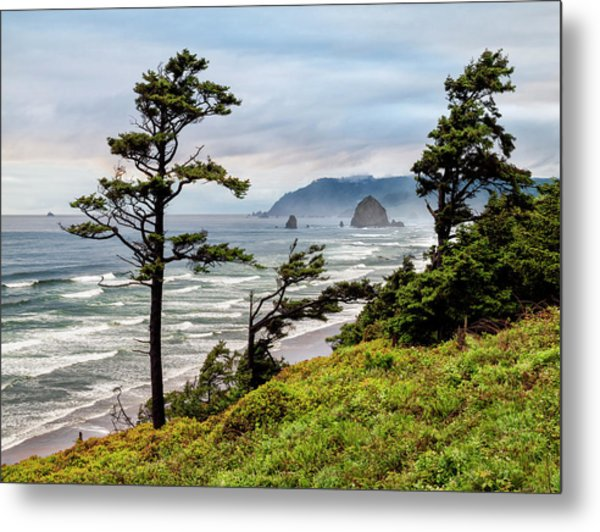 Usa, Oregon, Cannon Beach, View Metal Print