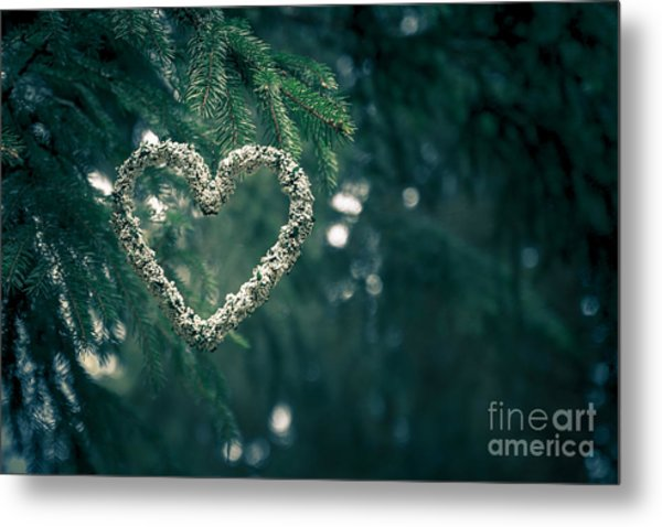 Valentine's Day In Nature Metal Print