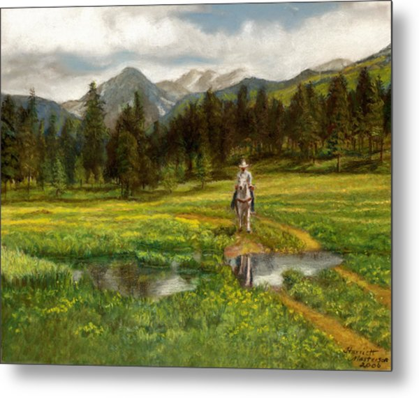 Vallecito Meadows Metal Print