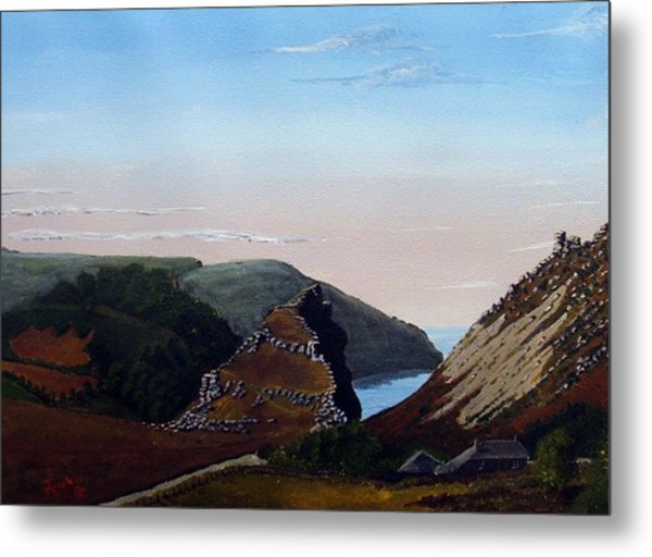Valley Of Rocks Devon Metal Print by Richard Taylor