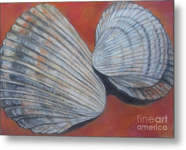Van Hyning's Cockle Shells Metal Print