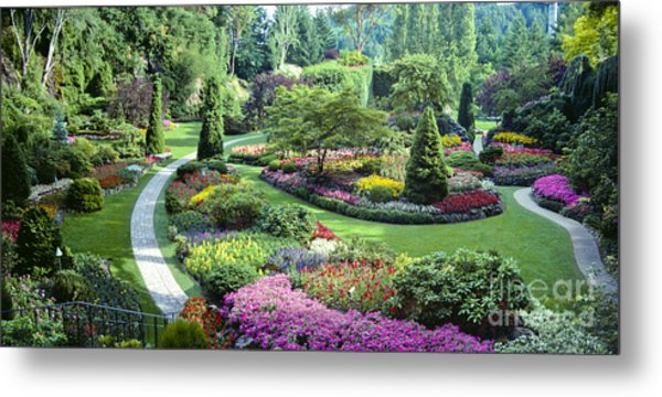 Vancouver Butchart Sunken Gardens Beautiful Flowers No People Panorama Metal Print