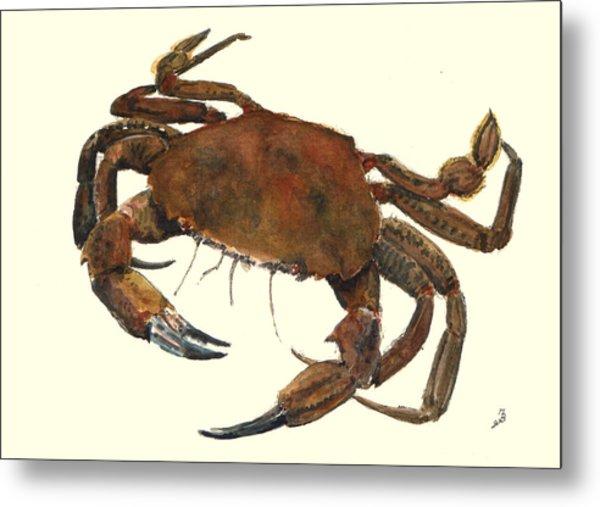 Velvet Crab Metal Print