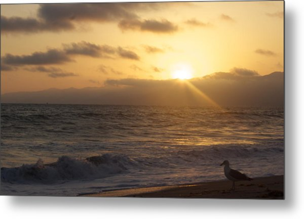 Venice Beach Sunset Metal Print by Rollie Robles