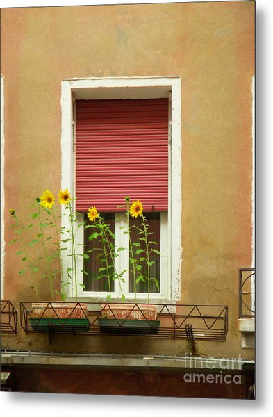 Venice Italy Yellow Flowers Red Shutter Metal Print