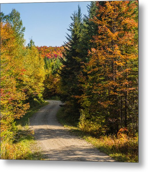 Vermont Country Road Metal Print