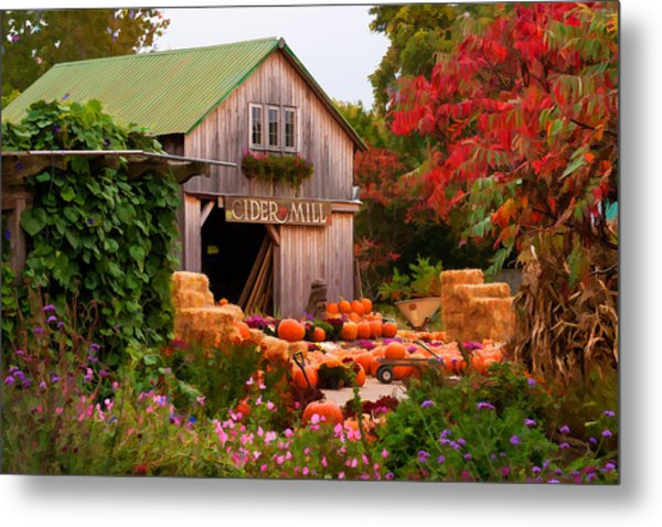 Vermont Pumpkins And Autumn Flowers Metal Print