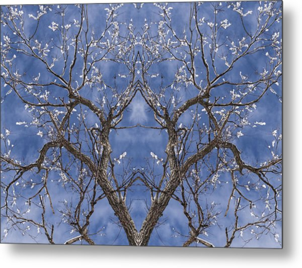 Vermont Winter Mirror Trees Snow Sky Metal Print