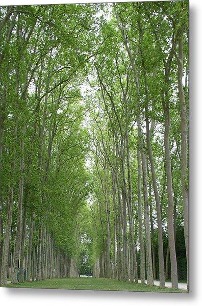 Versailles Tree Garden 2005 Metal Print