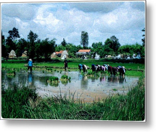 Vietnam Mekong Delta Metal Print