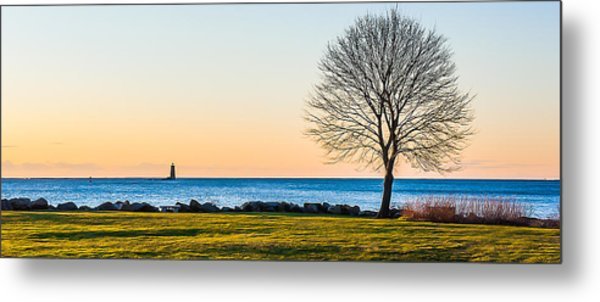 View From Great Island Common Metal Print
