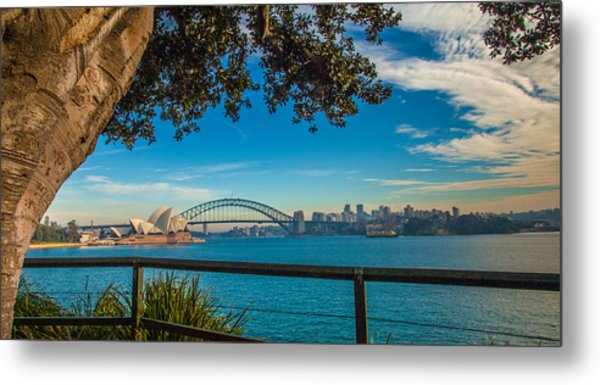 View From Lady Macquarie's Chair Metal Print by Dasmin Niriella
