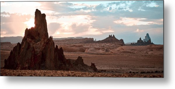 View From My Horse Metal Print