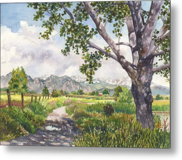 View From Stearns Lake Metal Print by Anne Gifford
