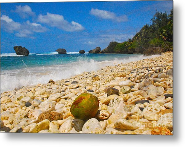 View From The Coconut Metal Print