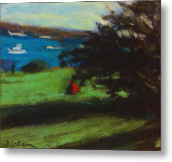 View From The Prom Metal Print by Jane Croteau