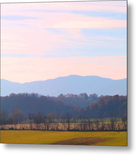 View Of The Valley Metal Print