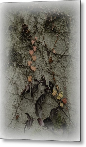 Vignes D'automne Metal Print