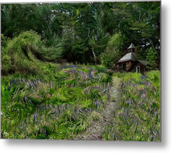 A Lupine Tale  Vincents View Metal Print