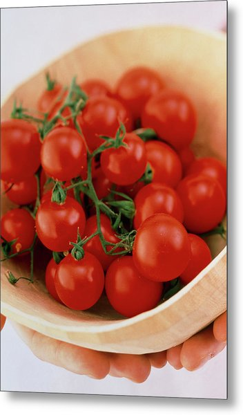 Vine Cherry Tomatoes Metal Print by William Lingwood/science Photo Library