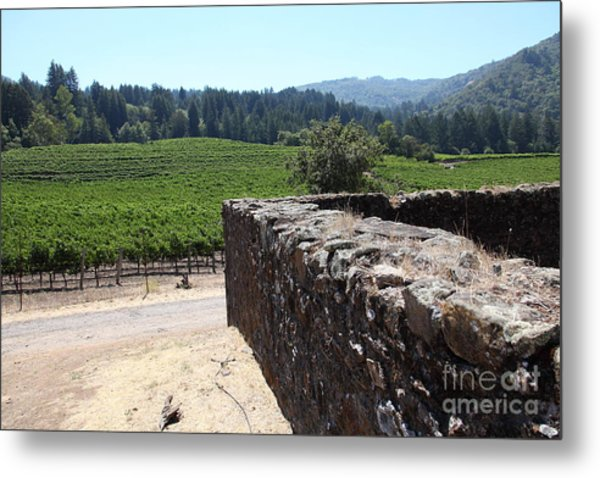 Vineyard And Winery Ruins At Historic Jack London Ranch In Glen Ellen Sonoma California 5d24537 Metal Print