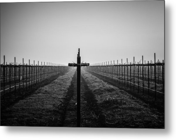 Vineyard Cross Metal Print