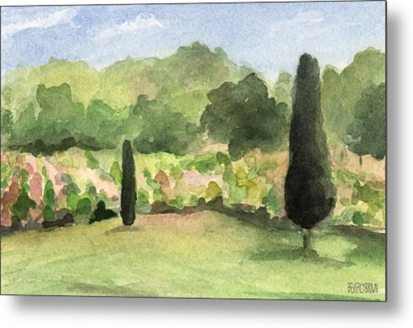 Vineyard In Provence Watercolor Paintings Of France Metal Print