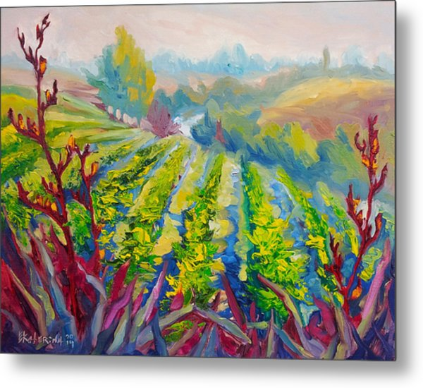 Vineyard Scene Oil Painting Metal Print