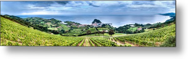 Vineyards By The Sea Metal Print