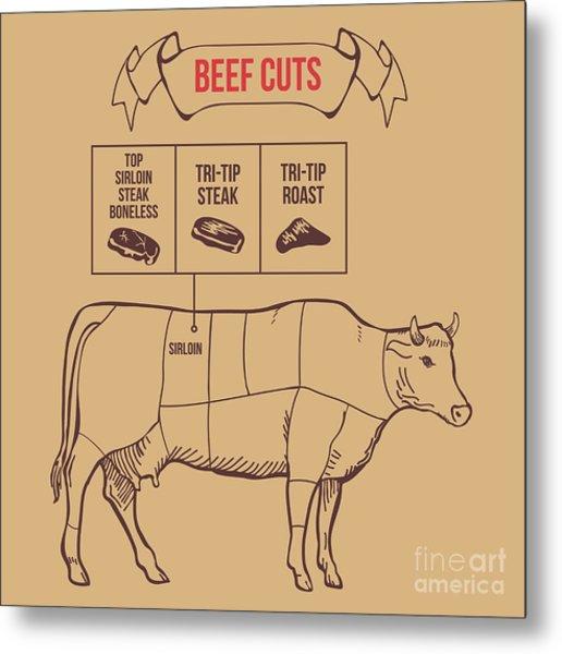 Vintage Butcher Cuts Of Beef Scheme Metal Print by Dimair