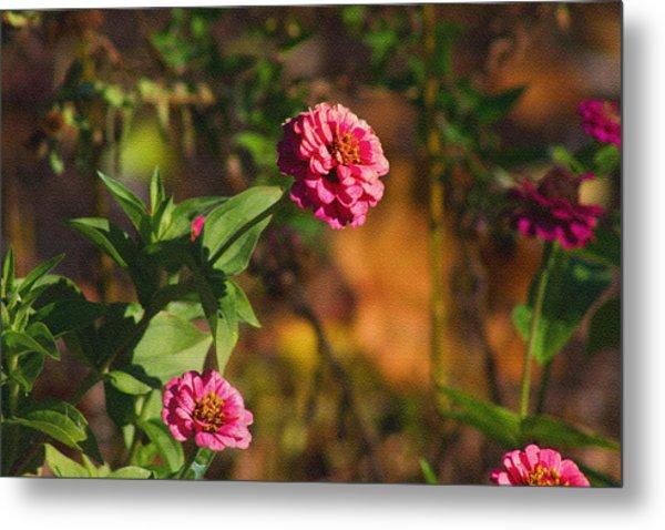 Vintage Flower Metal Print by Rhonda Humphreys