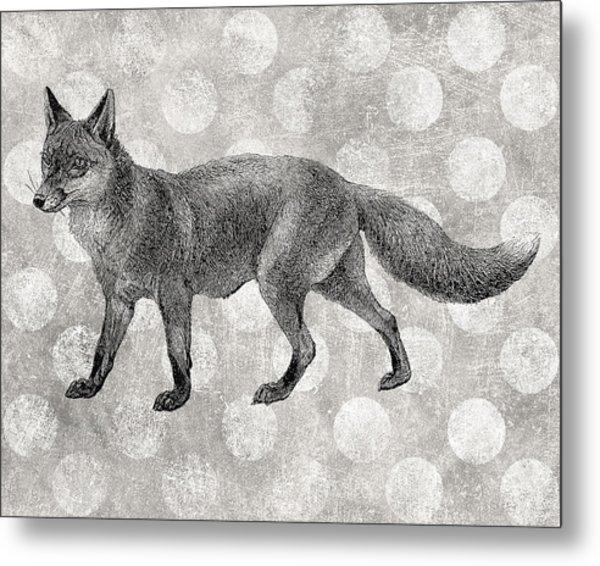 Gray Fox Metal Print