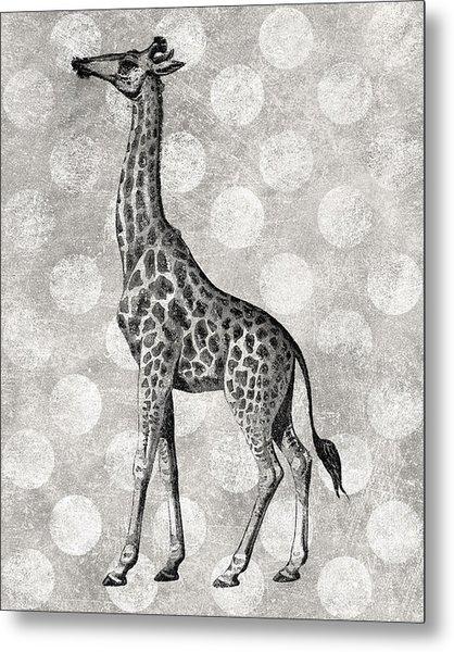 Gray Giraffe Metal Print